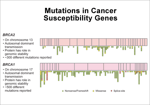 dna sequencing of cancer genes essay Learn about the clinomics program has developed a comprehensive diagnostic panel of 17 hereditary colon cancer genes using next-generation sequencing technologies the new hereditary colon cancer test has a cost comparable to ordering just three independent dna sequencing assays using.